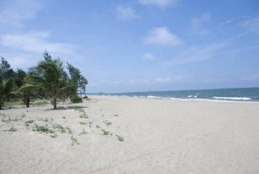 Tổ chức cho Công ty đi du lịch biển Hải Tiến hè 2020 (2,5 ngày)